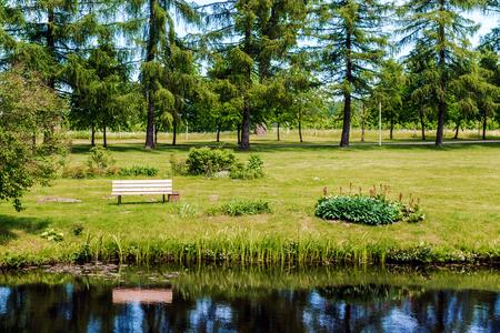 waterside: Picturesque lakeshore in summertime