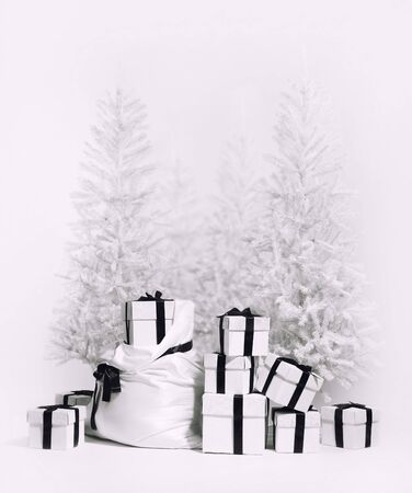 christmas tree presents: Christmas trees with bag and heap of gift boxes. Studio shot, black and white image