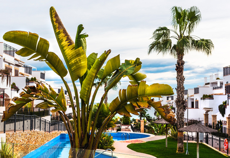 costa blanca: Typical spanish townhouse with a swimming pool. Alicante province, Spain