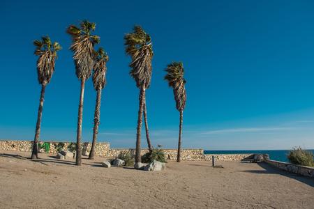 destination scenics: Spanish city of Tarragona. Catalonia region, Spain