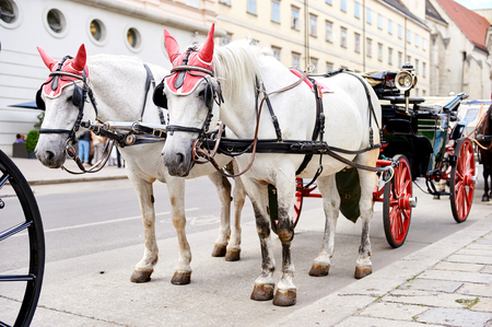 Horse-drawn carriage (Fiacre) waiting for a tourists in the old city in Vienna, Austria