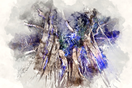 plaza: Giant rubber trees in the Plaza Gabriel Miro in Alicante city, Spain. Digital watercolor painting Stock Photo