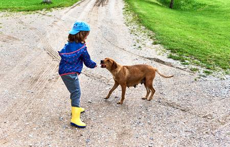 vagabond: Little girl feeds a homeless dog