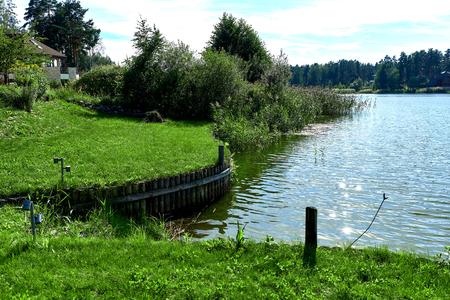 backwater: Lake at summertime