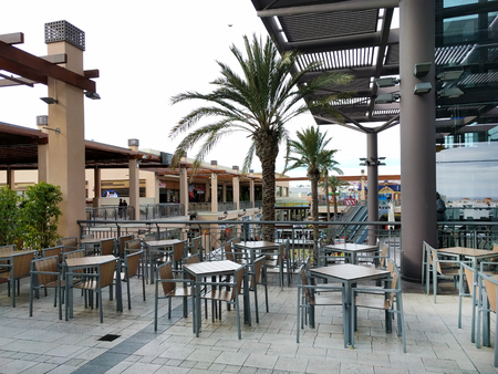 largest tree: Orihuela, Spain - January 10, 2017: Inside of La Zenia Boulevard shopping centre. Occupying over 160,000 square metres, with 150 shops and restaurants. La Zenia Boulevard is the largest Shopping centre in the province of Alicante. Spain