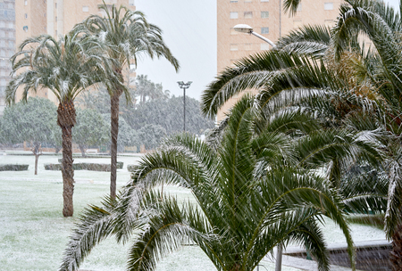 seaside resort: Snowfall at Campoamor, for the first time in over a century. Campoamor is a popular seaside resort on the south Orihuela Coast. Campoamor is on the border of the Costa Blanca and Costa Calida. Province of Alicante. Spain Stock Photo