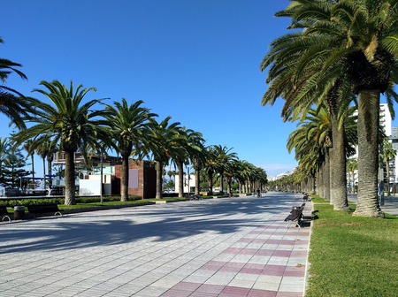 palm lined: Palm trees lined promenade of Salou, province of Tarragona, in Catalonia. Spain