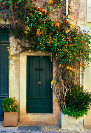 Retro wooden door outside of an old french house covered with a multicolored ivy