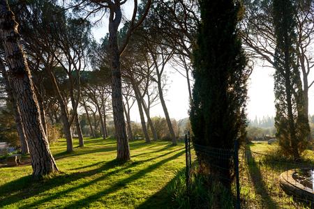 d'azur: Park of Lourmarin. Provence-Alpes-Cote dAzur. France