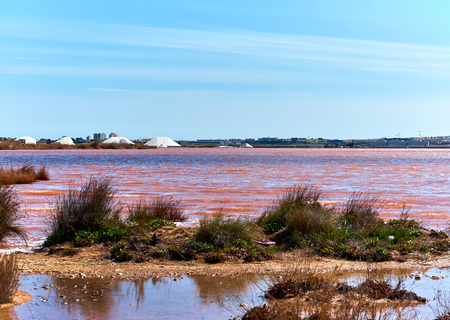 Las Salinas, salt lake of Torrevieja, declared one of the healthiest in Europe, according to the World Health Organization. Province of Alicante. Costa Blanca, Spain Stock Photo