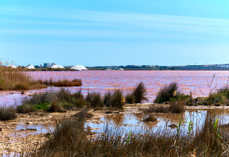 declared: Las Salinas, salt lake of Torrevieja, declared one of the healthiest in Europe, according to the World Health Organization. Province of Alicante. Costa Blanca, Spain Stock Photo
