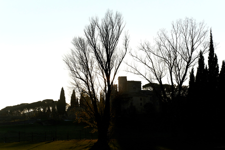 Silhouette of a trees and Renaissance castle of Lourmarin village. Provence-Alpes-Cote dAzur. France