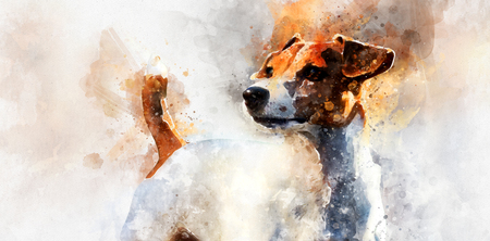 Digital watercolor painting of Jack Russell Terrier dog Stock Photo