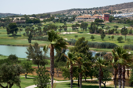 Typical spanish golf fields, meadows. Green lawns, palm trees and lake for golf sport. Green area, tropical climate. idyllic sunny scenery for playing, gaming. Province of Alicante Costa Blanca. Spain 写真素材