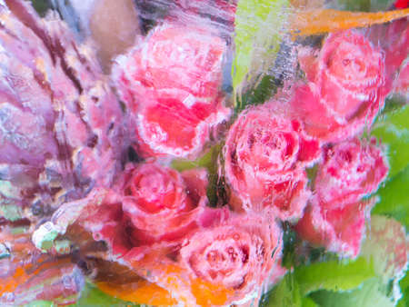 Abstract blurred background of frozen flowers Stock Photo - 18289663