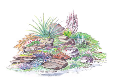 Painted by watercolor example garden landscaping alpine slide style photo