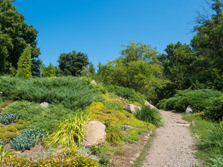 rockery: Rockery with evergreen plants and trees in the summer Stock Photo
