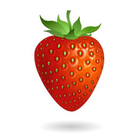 Erdbeere Standard-Bild - 16018940