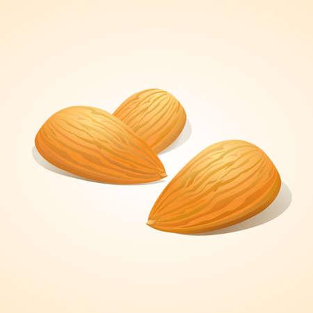 Almond nuts  Stock Illustratie