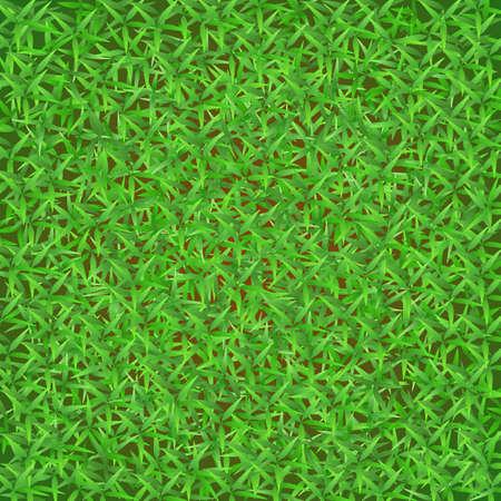Green grass Stock Vector - 17253617