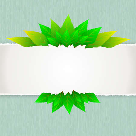 Green leaf with paper background