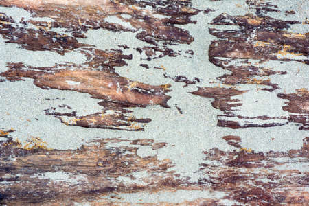 Sand on Old wood texture background Stock Photo