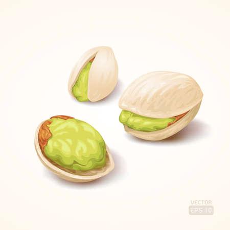 pistachio: Pistachios, Vector