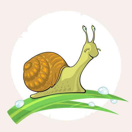 Cute cartoon Snail on grass