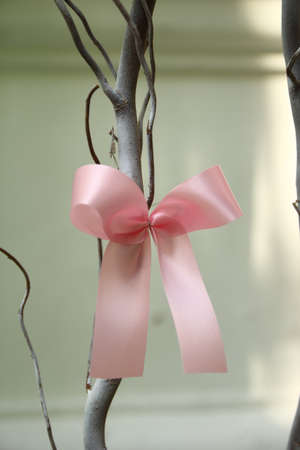 Pink ribbon  Stock Photo - 16556125