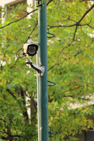 Security surveillance camera near green forest photo