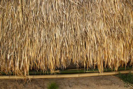 Grass thatched roof house in rural Thailand Stock Photo