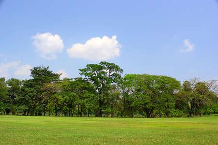 Parks afternoon Bangkok Thailand