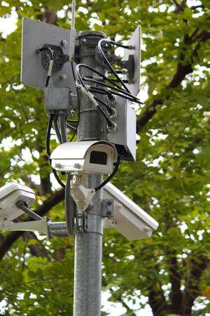 CCTV Security surveillance green forest