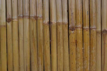 Local Thai bamboo fence wall background photo