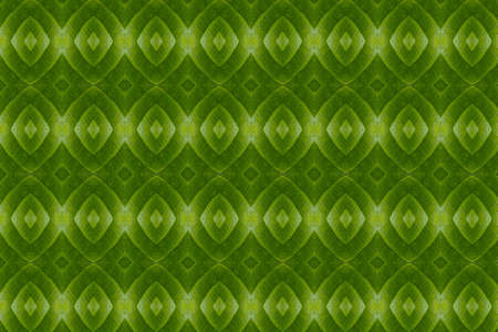 constructive:  Create from leaf  Wall paper concept  Stock Photo