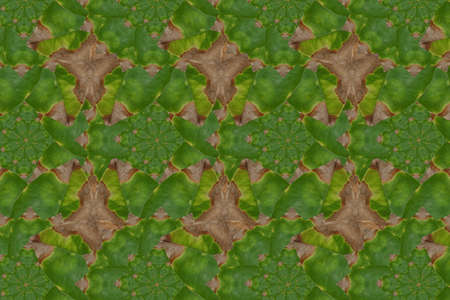 polution: Wallpaper  concept.Idea from leaf