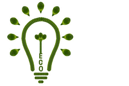 polution: Idea light bulb from leaf. ECO  concept