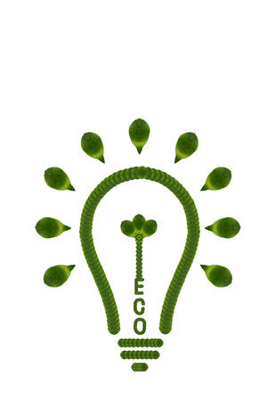 Idea light bulb from leaf. ECO  concept
