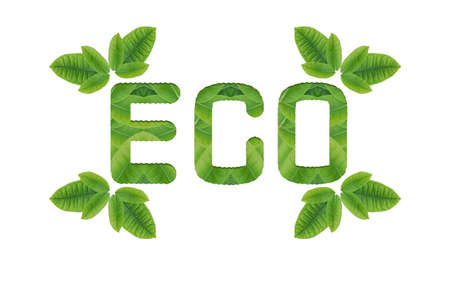 recycling campaign: Idea form leaf create.Ecology icon set