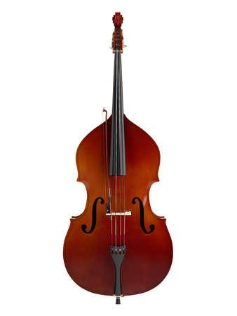 spigola: Contrabbasso o string basso, contrabbasso, basso standup o contrabbasso isolato su sfondo bianco