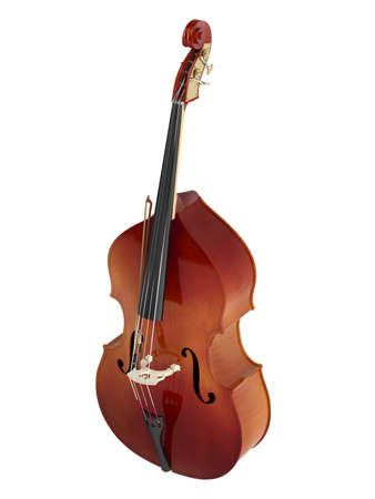 upright: Double bass or string bass, upright bass, standup bass or contrabass isolated on white background