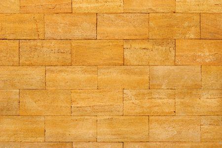 coquina: Fragment of good processed coquina with narrow seams