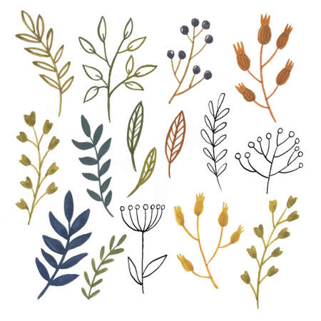 Gouache flowers and leaves - autentic hand drawn elements 版權商用圖片
