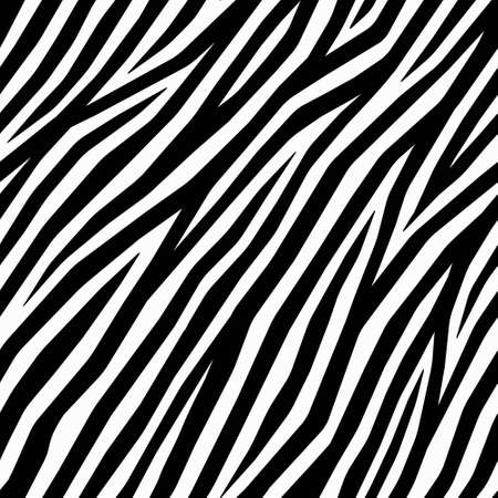 Zebra Pattern, black and white graphic background. Vector zebra print for textile, furniture fabric, fashion or interior design. African style. Vector zebra stripes background. Diagonal zebra skin.