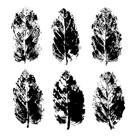 Leaves imprints. Peppermint stamps. Realistic texture. Floral vector design elements. Isolated objects on white. Black and white set.