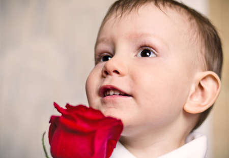 nice little boy wishes mum happy birthday gives  flower  red rose