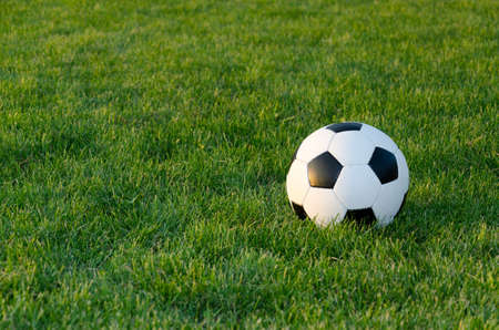 enjoymant: Soccer ball on the green grass of a sportsfield in evening light with copyspace
