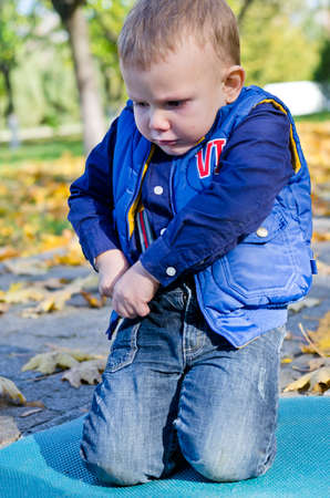 Cute little boy playing outdoors in a park kneeling on a mat amongst colourful autumn leaves Stock Photo - 16140252