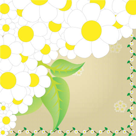 Camomile frame Stock Vector - 17147885