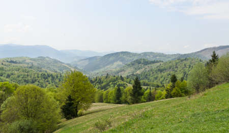 forested: Scenic view of a beautfiul lush green landscape with forested mountains and valleys